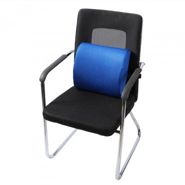 Blue Spine Support on Chair
